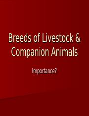 Breeds of Livestock and Companion Animals .ppt