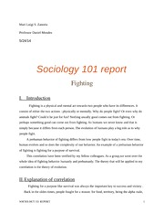 Sociology 101 Report on Fighting