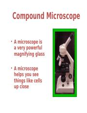 AP1L-Compound Microscope Lab2.ppt