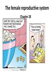 Chapter 28 The female reproductive system STUDENT(1).pptx