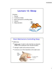 lecture 12 sleep
