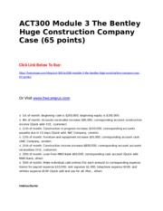 ACT300 Module 3 The Bentley Huge Construction Company Case (65 points).doc