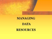 Managingdataresources(Presentation)