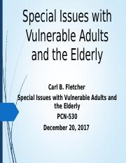 Special Issues with Vulnerable Adults and the Elderly ppt - Special