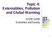 Topic 4. Externalities, Pollution and Global Warming