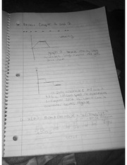 Vectors and Projectile Motion Notes