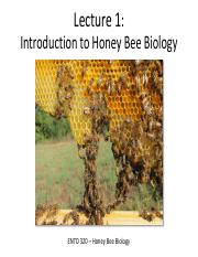 Lecture 1 - Introduction to Honey Bee Biology