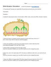 DNA Simulation With Mutation Worksheet.pdf - Name DNA ...