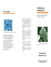 Microbiology Pamphlet