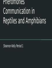 Pheromones Communication in Reptiles and Amphibians