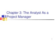 Chapter 3 - Analyst as a Project Manager