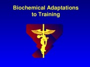 KIN 3515 Biochemical Adaptations to Training