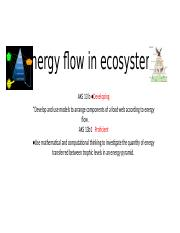 Energy flow in ecosystem. for DLD thursday and Friday.pptx