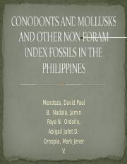 Conodonts and mollusks and other non-foram index fossils (Group6)