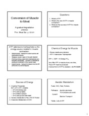 9 Conversion of Muscle to Meat