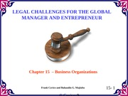 Chapter15 Legal Challenges
