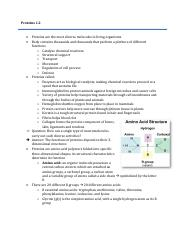 RNA Protein Synthesis Lab - Name Hamza Awan Date Student ...