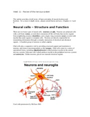 Week_11_-_Review_of_the_nervous_system