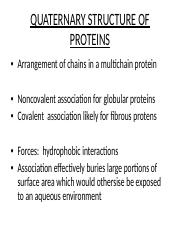 08-12-11-1 Protein quaternary structure (Detloff)