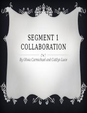 SEGMENT 1 COLLABORATION