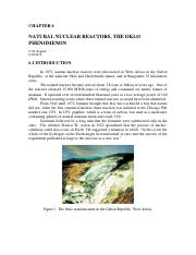 Natural  Nuclear Reactors, The Oklo Phenomenon.pdf
