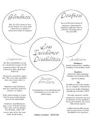 Gardner_Tiffany_Low-Incidence Disabilities Visual
