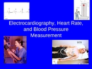 Lab 8 - ECG, Heart Rate & Blood Pressure, Respiratory System