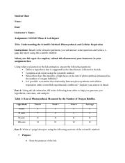 SCIE207_Lab1_worksheet Completed.docx