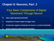Chapter 8 Neurons, Part 2