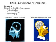 L3 Methods of Cognitive Neuroscience