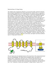 BIO 338 Lecture 10 Molecular Basis of V-dependent channels