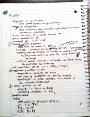 Respiratory Voice Over Notes 4