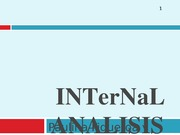INTerNaL ANALISIS