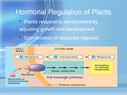 Hormonal Regulation of Plants
