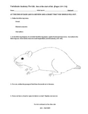 Rat Lab - prelab, worksheet, review, chart