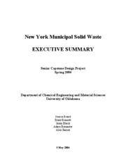 Municipal Solid Waste Processing-Executive Summary