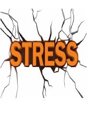 31 Stress_ Jennings guest lecture notes.pdf