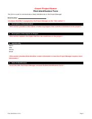 Risk Identification Form Template.doc
