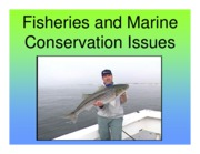 J Lecture 11 - Fisheries and Marine Conservation