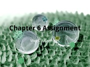 Chapter 6 Assignment (C01)-1