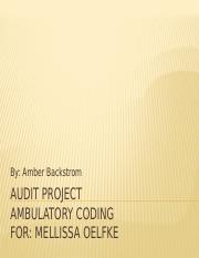 Audit Project.pptx