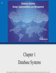Chapter 1 - Database Systems