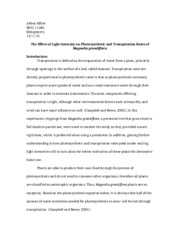 Research Article Final Draft
