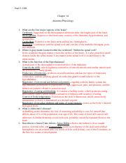 Chapter 14 Anatomy Physiology (2).docx