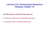 Lecture 3-4