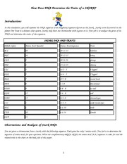 How Does Dna Determine The Traits Of An Organism Worksheet