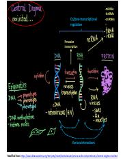 RNA Binding Proteins Introduction2.pdf