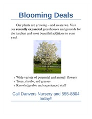 Blooming Deals Assignment