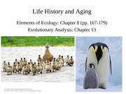 Lecture 13-Life History