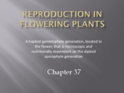chapter37 - flowering plant reproduction _pdf_